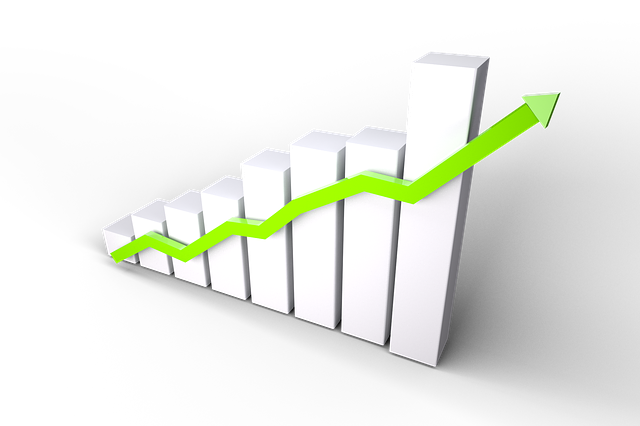 Evaluating Growth Stocks: Shopify