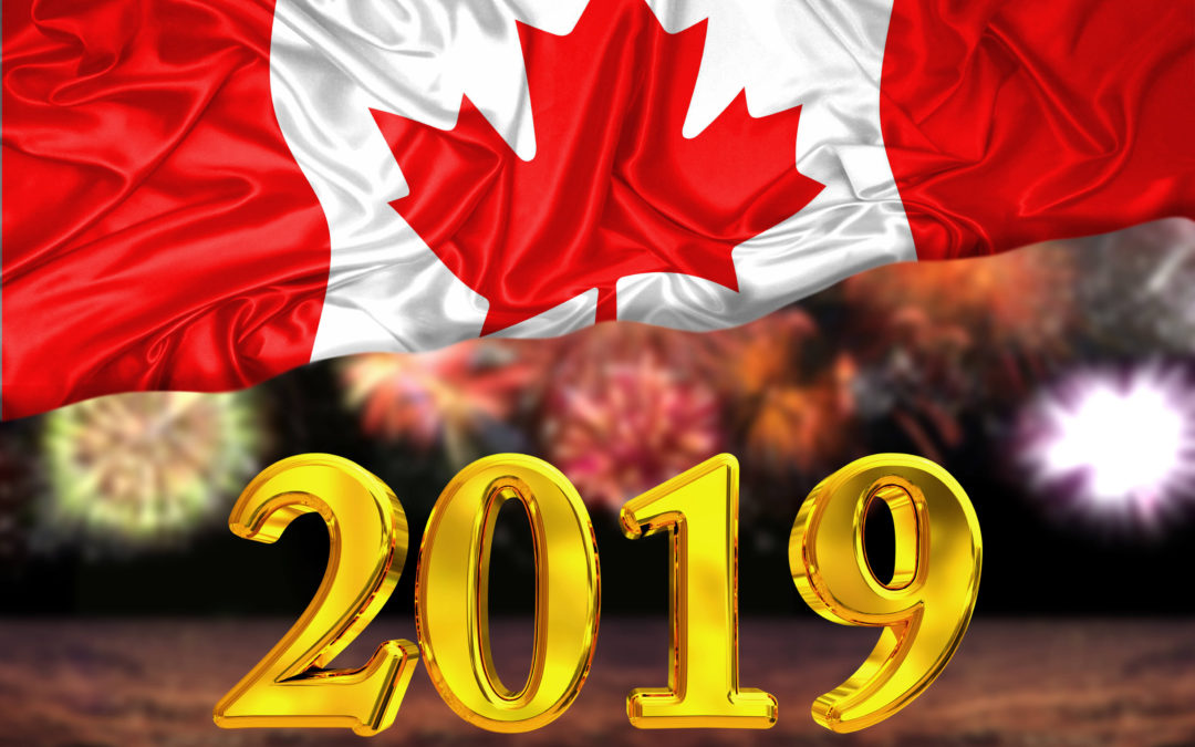 Annual review: My Canadian DGI Portfolio for 2019